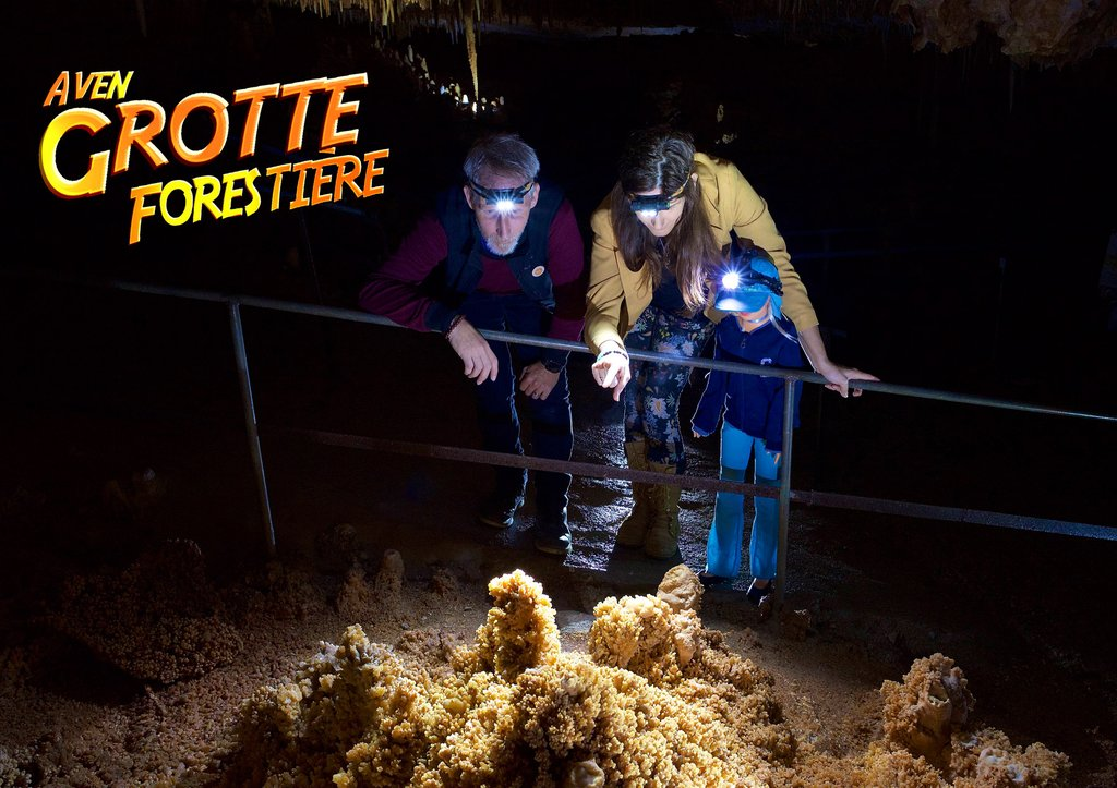 Grotte Aven Forestière