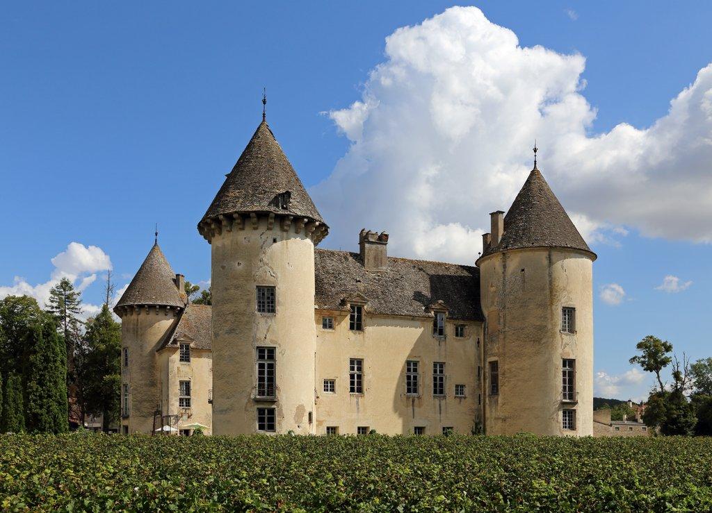 Château de Savigny-lès-Beaune et ses 9 musées