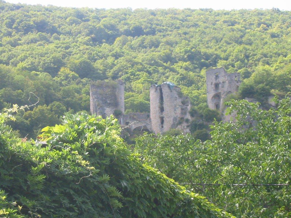 Ruine du Château de Rochechinard