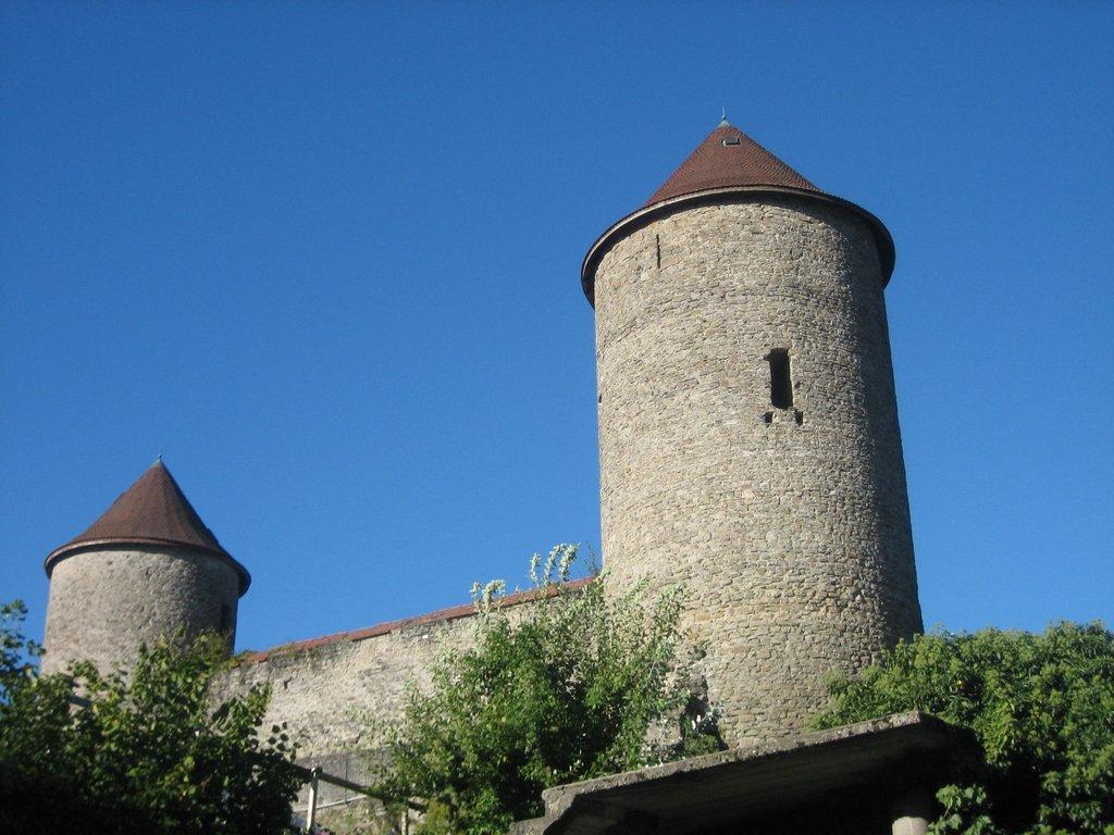 Château Béatrix de Faucigny à Bonneville
