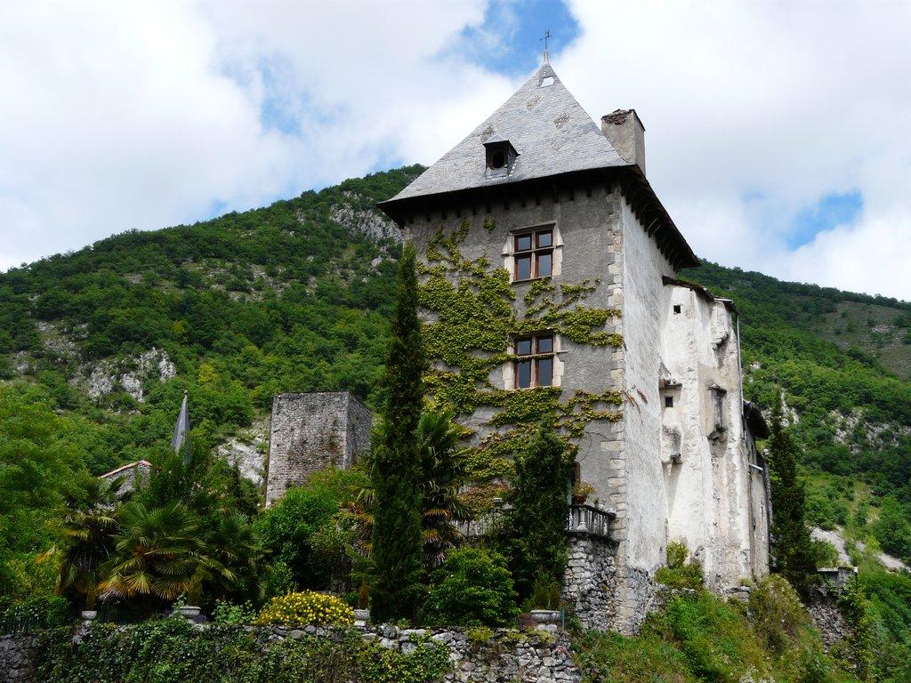 Château de Mauléon