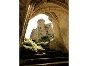 Le château de Lavardin