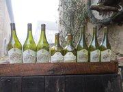 Château-Chalon célébre pour ses vins