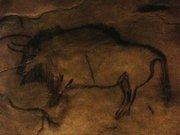 Niaux-bison-transperce