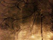 Niaux-cerf-tete-cheval
