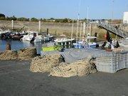 Matériel de pêche à Ars-en-Ré
