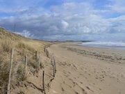 Les dunes de l'Ile de Ré