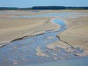 Le Hourdel, marée basse
