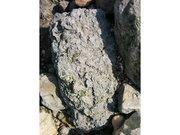 Fossiles aux falaises des Vaches Noires