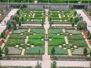 Jardin à la francaise du chateau de Villandry
