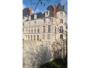 Saint-Brisson-sur-Loire château