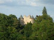 Château de Planèze, derrière de hauts arbres