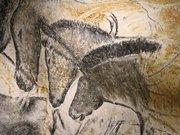 La grotte Chauvet-Pont d'Arc (Replique)
