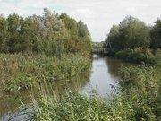 Réserve naturelle du Romelaere - Platier d'Oye