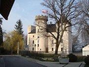 la Cité médiévale de La Roche sur Foron