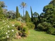 Jardin d'Amérique subtropicale - Domaine du Rayol