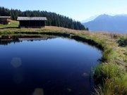 Une mare au lieu-dit le Clou à Arêches (Savoie)