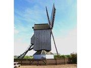 Moulin Noordmeulen ou moulin du nord à Steenvoorde
