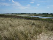 Réserve Naturelle Nationale du Platier d'Oye